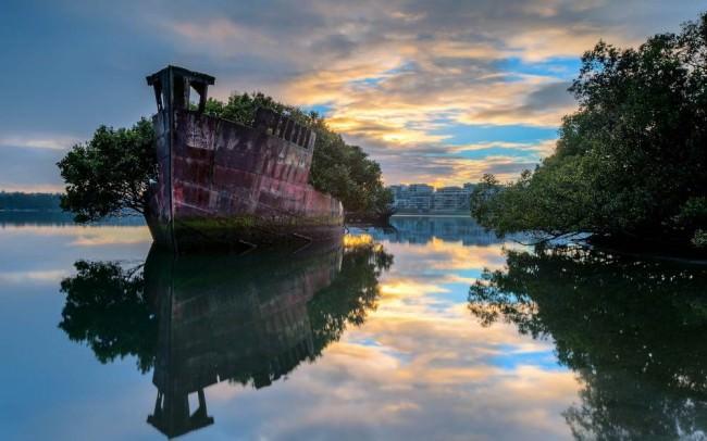 barco_bosque_mar_Cultura_Inquieta2