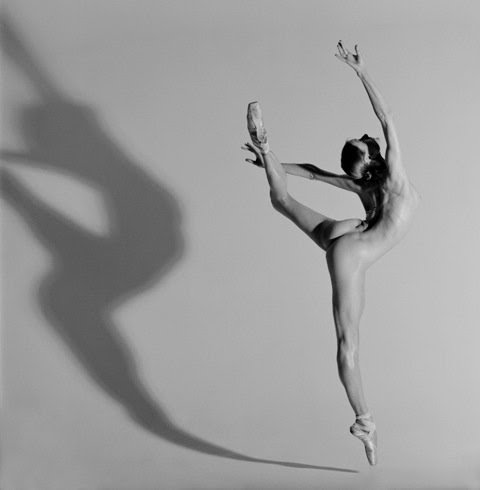 by Howard Schatz