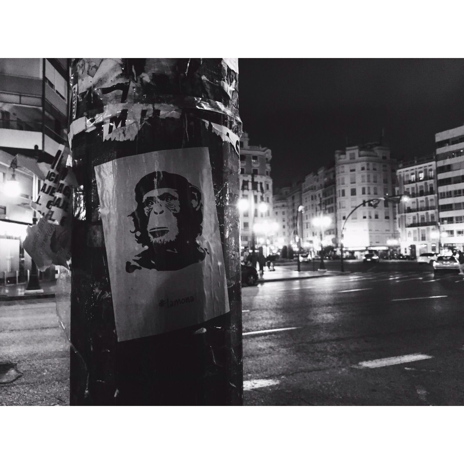 Che monkey, Valencia street art