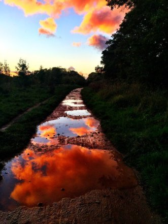 Wild lights, Wild land - Be artist Be art