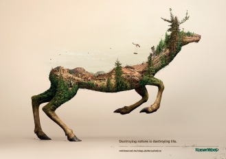 Destroying nature is destroying life - by Robin Wood - be artist be art