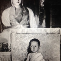 @DalaiLama (2 year old) - World faces