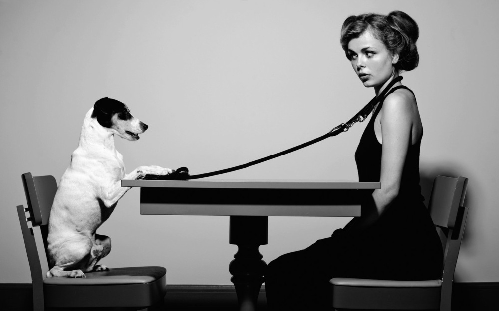 #Dog Paradox - by Olivier Rath - be artist be art