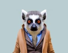 Zoo Portraits, Stylish Dressed Animals - by Yago Partal - be artist be art