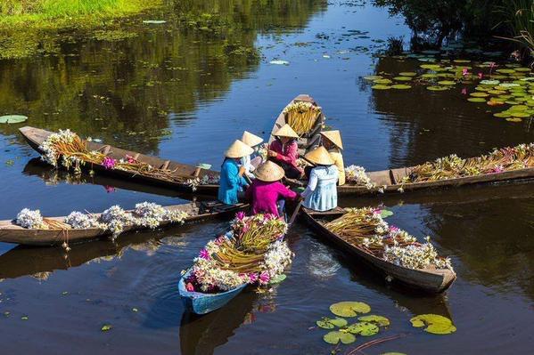 Human #Lotus - Worldwide #beauty - be artist be art magazine