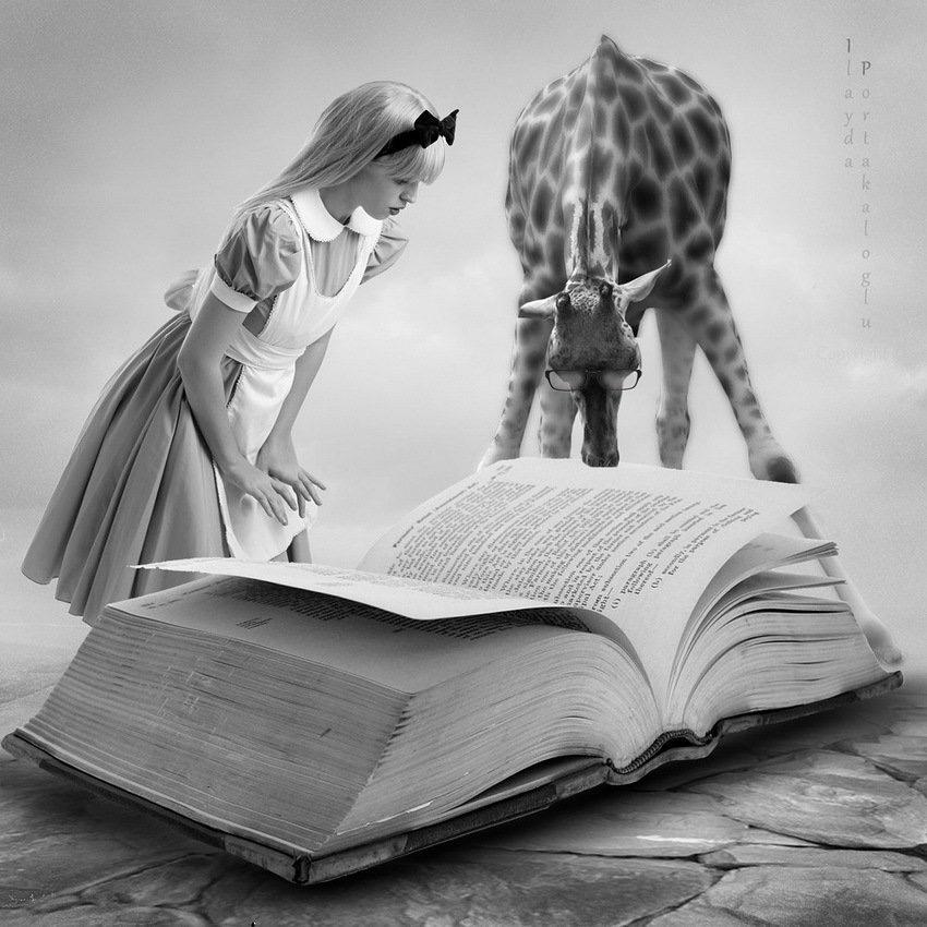 Fantasy Dreams come true - #Read - be artist be art