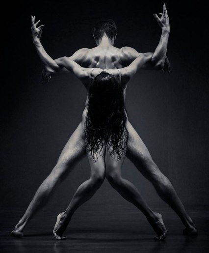 Ellegant Dancers in Motion - by Vadim Stein