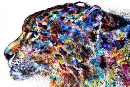 Animal Wild & Colorful Souls - by Emily Tan - be artist be art magazine