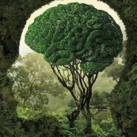 Use your #Brain, GO #GREEN! - #Creative #Art