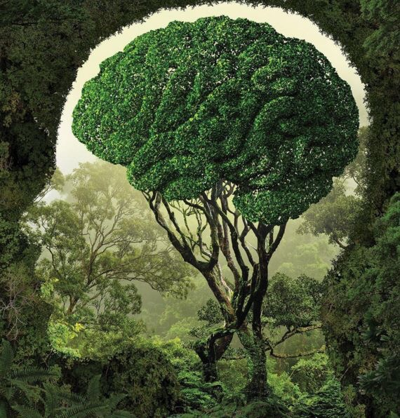 Use your #Brain, GO #GREEN! - #Creative #Art - be artist be art magazine
