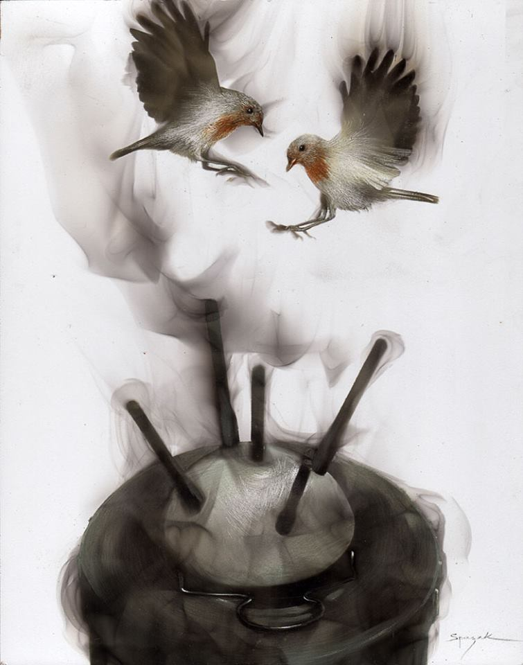 Fire made #Birds, when #Magic happens - by Spazuk - be artist be art magazine