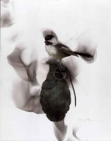 Fire made #Birds, when #Magic happens - by Spazuk
